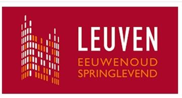 Studie potentieel warmtenetten Stad Leuven
